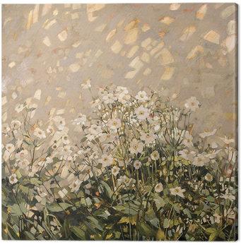 Canvastavla Anne-Marie Butlin - Morning Sun on Japanese Anemones