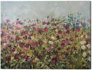 Canvastavla Anne-Marie Butlin - Pink Cosmos