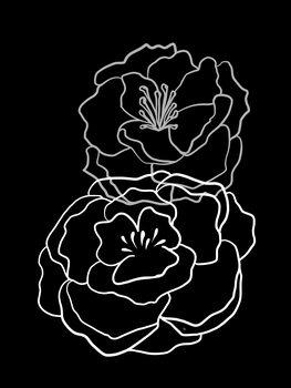 Canvastavla Black Poppies