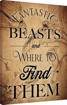 Canvastavla Fantastiska vidunder och var man hittar dem - Beast Drawings