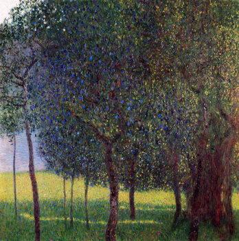 Canvastavla Fruit Trees
