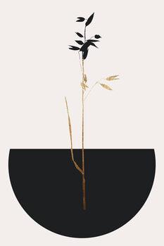 Canvastavla Planta Negra