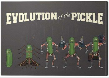Canvastavla Rick and Morty - Evolution of the Pickle