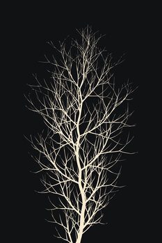 Canvastavla The Tree WHITE