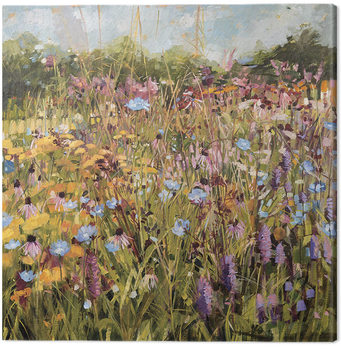 Canvastavla Anne-Marie Butlin - Summer Field with Scabious