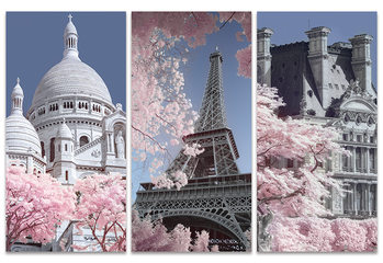 Canvastavla David Clapp - Paris Infrared Series