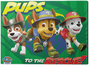 Canvastavla  Paw Patrol - Pups To The Rescue