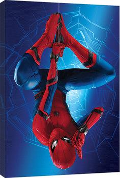 Bilden på canvas Spider-Man Homecoming - Hang