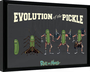 Gerahmte Poster Rick & Morty - Evolution Of The Pickle