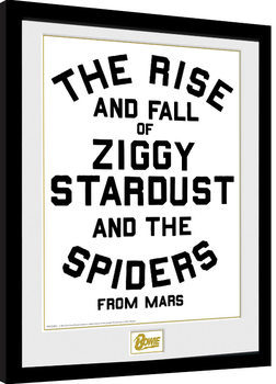 Indrammet plakat David Bowie - The Rise and Fall