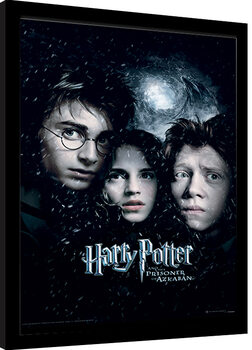 Indrammet plakat Harry Potter - Prisoner Of Azkaban