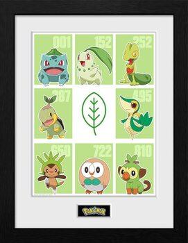Indrammet plakat Pokemon - First Partner Grass