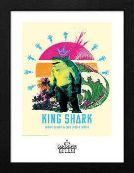 Indrammet plakat Suicide Squad - King Shark