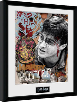 Harry Potter - Harry Potter indrammet plakat