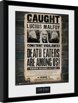 Harry Potter - Lucius indrammet plakat