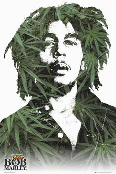 Bob Marley - leaves - плакат (poster)
