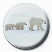 Button  3 POLAR BEARS