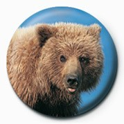 Button  BROWN BEAR