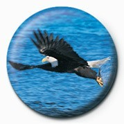 Button  EAGLE