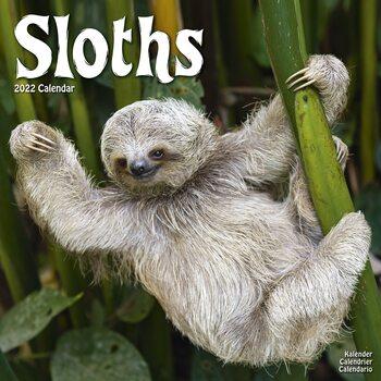 Sloths Calendar 2022