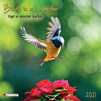 Birds in our Garden Calendar 2021