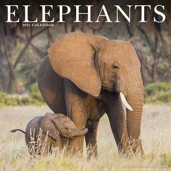Elephants Calendar 2021