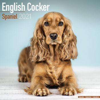 English Cocker Spaniel Calendar 2021