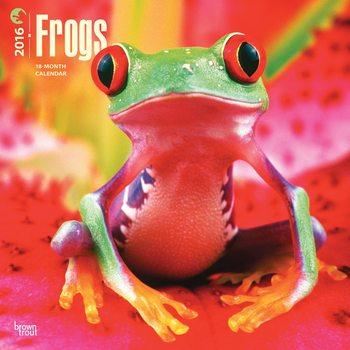 Frogs Calendar 2021
