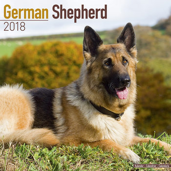 German Shepherd Calendar 2018