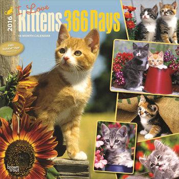 Kittens Calendar 2021