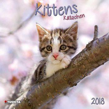 Kittens Calendar 2018