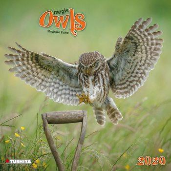 Magic Owls Calendar 2020