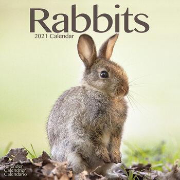 Rabbits Calendar 2021