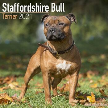 Staffordshire Bull Terrier Calendar 2021