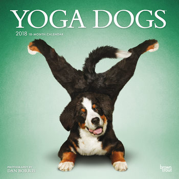 Yoga Dogs Calendar 2018