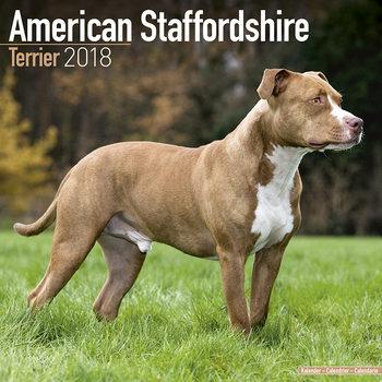 Calendario 2018 Amer. Staff Terrier