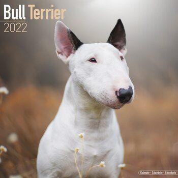 Calendario 2022 Bull Terrier