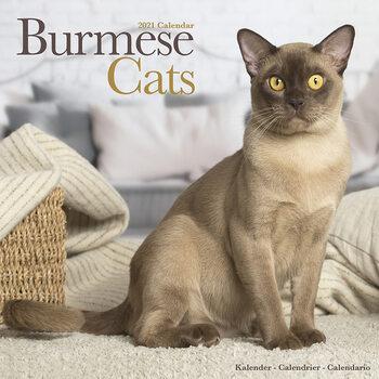Calendario 2021 Burmese Cats