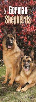 Calendario 2017 Cane da pastore tedesco
