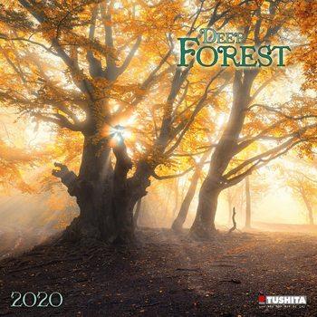 Calendario 2020  Deep Forest