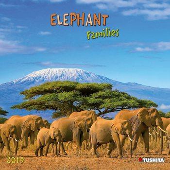 Calendario 2020 Elephant Families