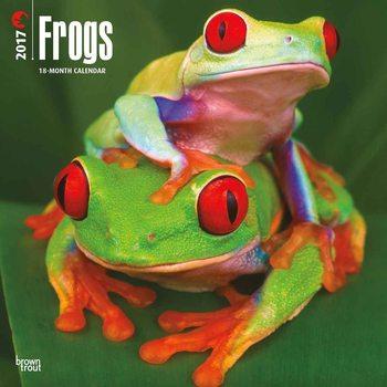 Calendario 2017 Frogs
