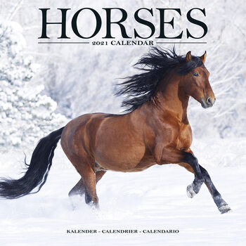 Calendario 2021 Horses