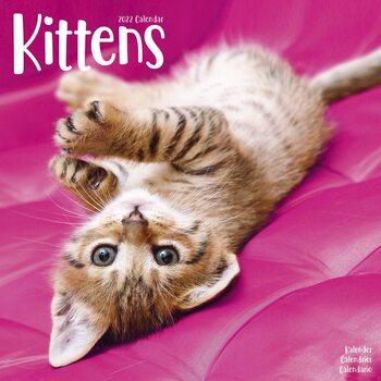 Calendario 2022 Kittens
