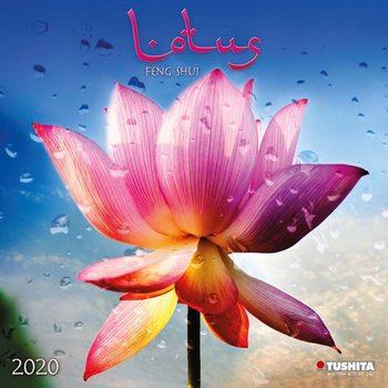 Calendario 2020  Lotus Feng Shui