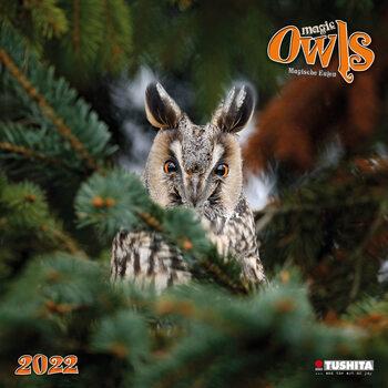 Calendario 2022 Magic Owls