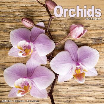 Calendario 2021 Orchids