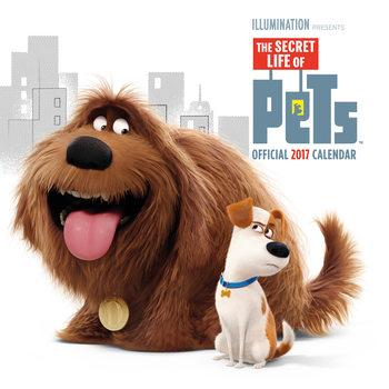 Calendario 2017 Secret life of pets