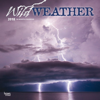 Calendario 2021 Wild Weather