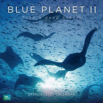 Calendar 2021 BBC - Blue Planet